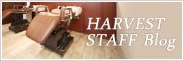 HARVEST STAFF Blog